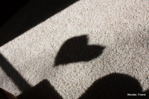 A picture of a cut-out heart, in shadow.
